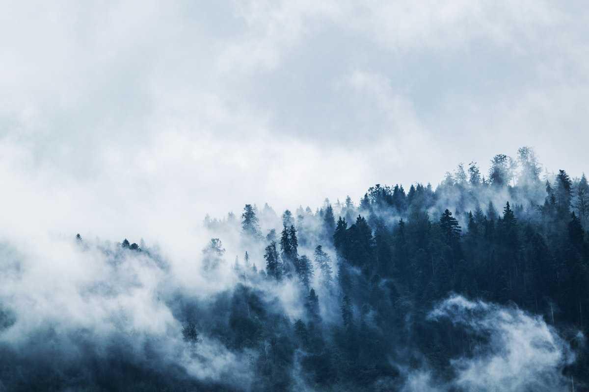Vad är en överlevnadskurs? Intervju med Ranger Solutions